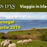 Irlanda – Viaggio 2019